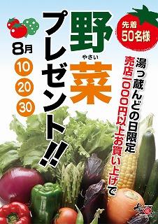8ツ木野菜プレゼント.jpg